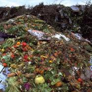 odpadna-hrana