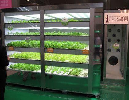 rastlinjak-Chef-s-Farm