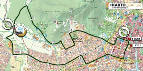 ljubljanski-maraton-rekreacijski