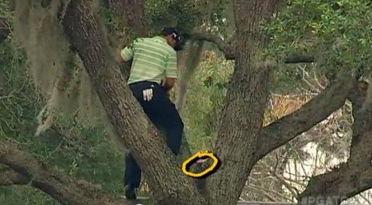 sergio-garcia-drevo-golf