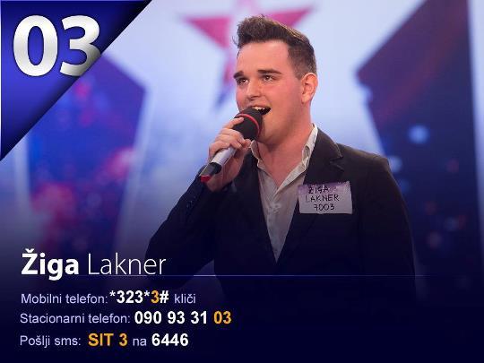 sit-2013-1-polfinalna-ziga-lakner