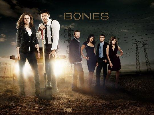 bones-serija