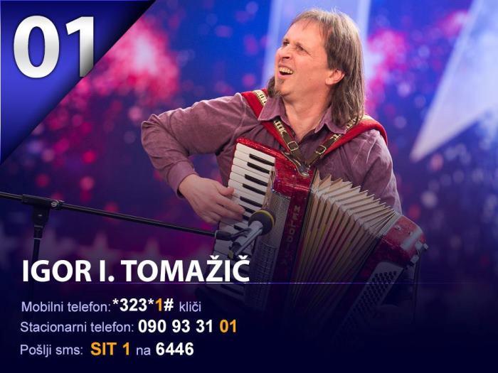 sit-2013-3-polfinalna-igor-i-tomazic