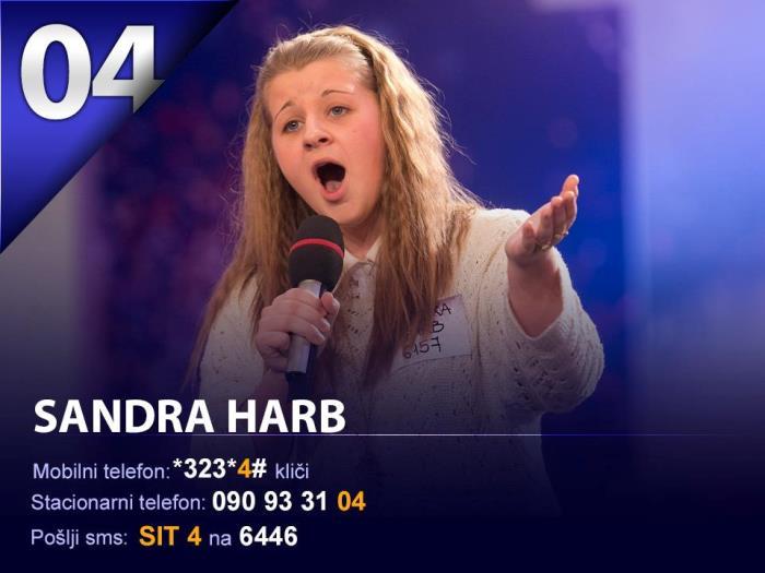 sit-2013-3-polfinalna-sandra-harb