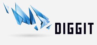diggit-2014