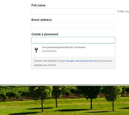 google-chrome-password-generator