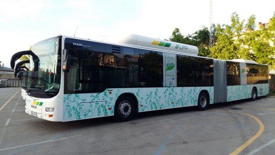 lpp-avtobusi-maj-2016