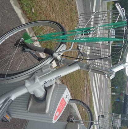 bicikelj-pr-barje-3
