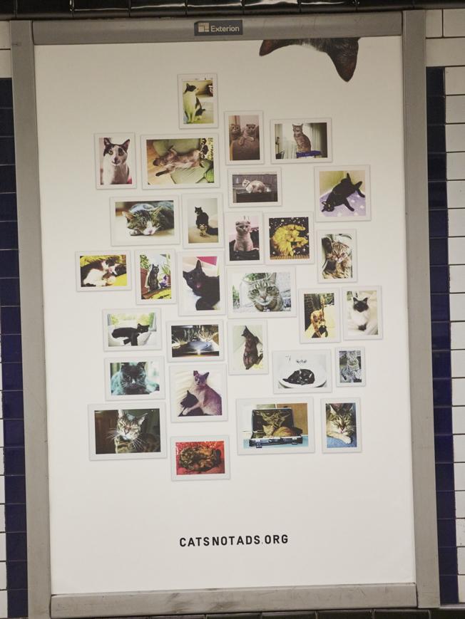 macke-london-podzemna-CatsNotAds-3