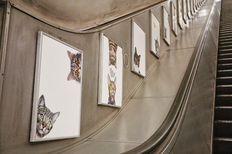 macke-london-podzemna-catsnotads-5