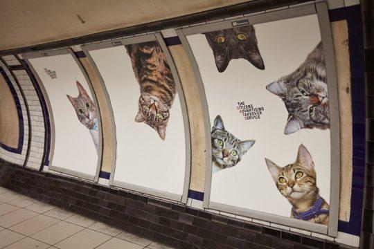 macke-london-podzemna-catsnotads-8