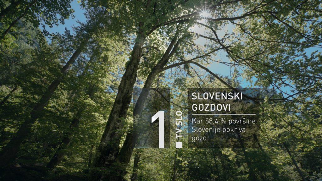 RTV-SLO-1-tv-slovenija-spot-slovenski-gozdovi