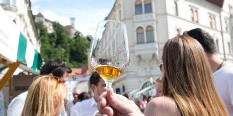 ljubljanska-vinska-pot-1