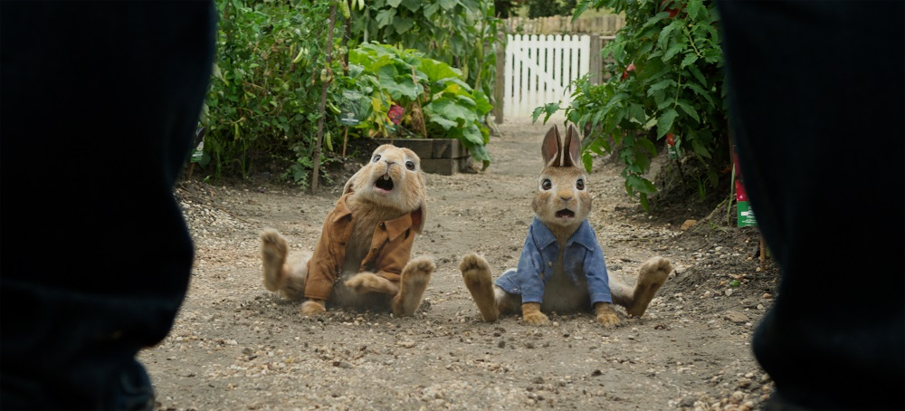 Peter zajec-Peter Rabbit-4