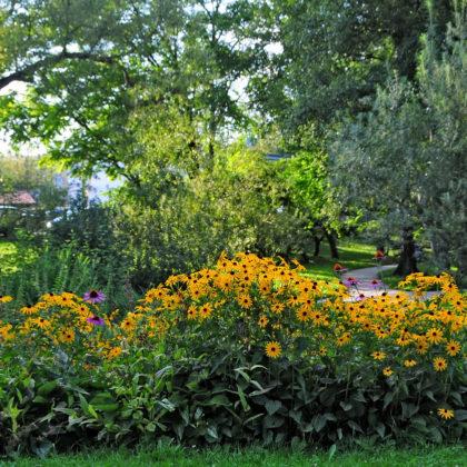 Botanicni-vrt-D.-Wedam-FB