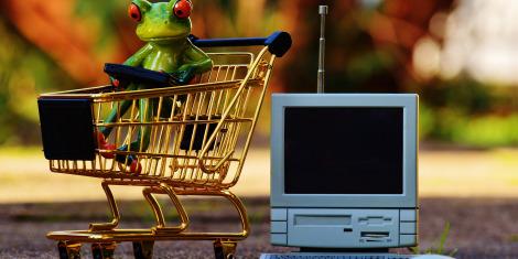 spletni-nakupi-zaba-razunalnik-kartica