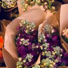cvetlicarna-roze-sopek