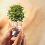 inovacije vlaganje investicije